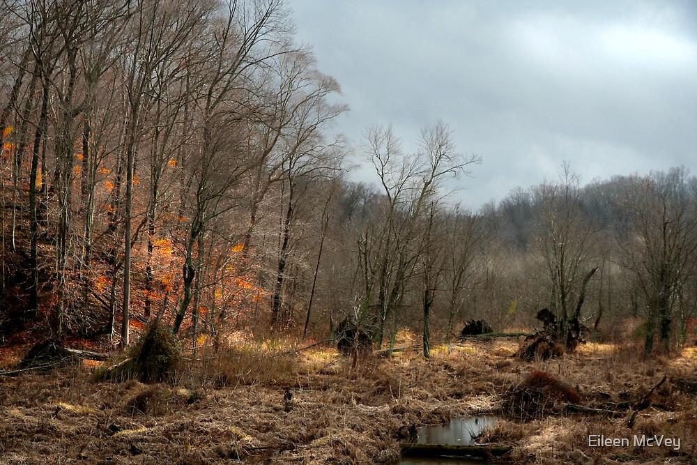 The Marsh #2 by Eileen McVey