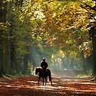 Enjoying another autumn ride by jchanders