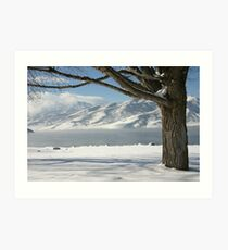 Snowy Lake Art Print
