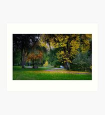 Skaha Lake Park Art Print