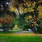 Skaha Lake Park by John Poon