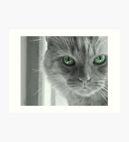Eyes of Green ~ Art Print