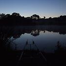 Carp Fishing at Dawn by mps2000