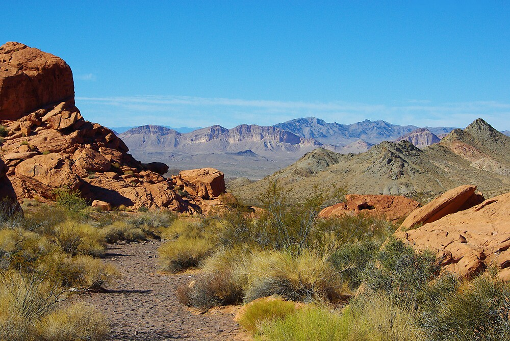 Desert near Lake Mead, Nevada by Claudio Del Luongo