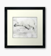 A jumper for christmas Framed Print