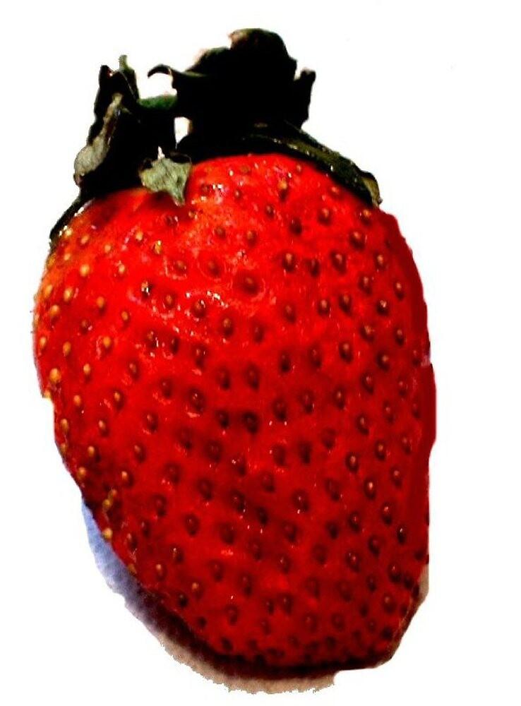 """Strawberry"" by njchip123"