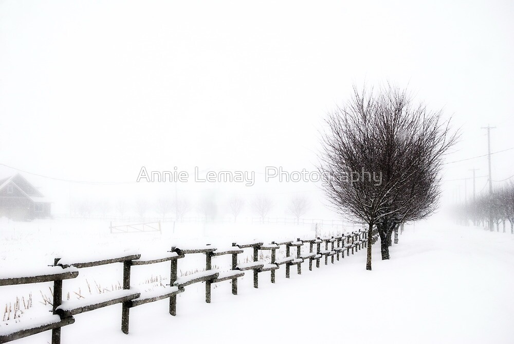 The Magic of Snow by Annie Lemay  Photography