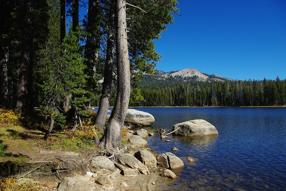 Beautiful Ice House Reservoir, California by Claudio Del Luongo