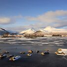 Rannoch Lochs at New Year by beavo