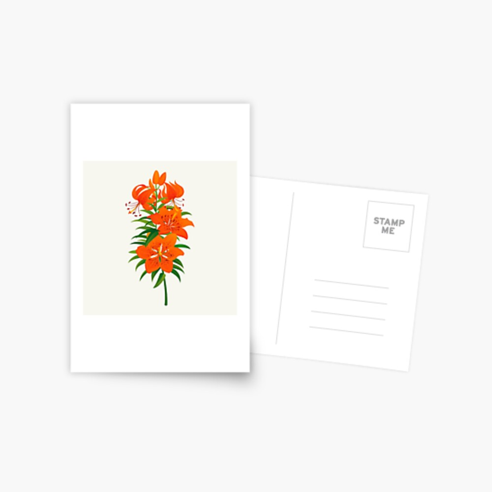 Red Lily Postcard