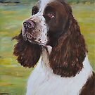 English Springer Spaniel by Mike Paget