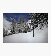 Welcome to Narnia Photographic Print