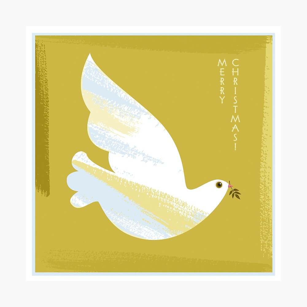 Christmas Dove Photographic Print