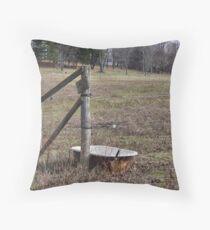redneck jacuzzi Throw Pillow