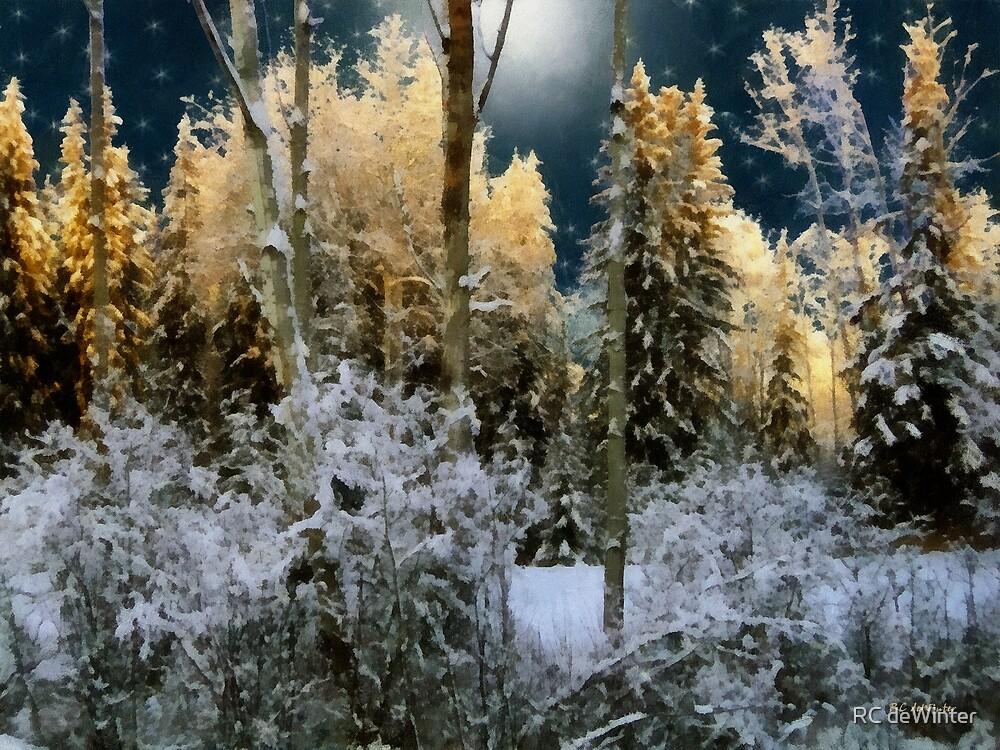 Starshine on a Snowy Wood by RC deWinter