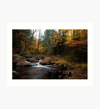 Long Lake, Adirondack Mountains NY Art Print