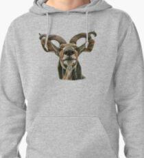 Greater African Kudu Pullover Hoodie
