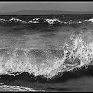 Sea Spray by Don Stott