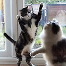 High Five by Clive