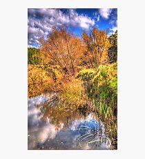 Seasons  - Oberon, NSW Australia - The HDR Experience Photographic Print