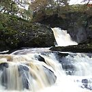 Ingleton Waterfalls by mps2000