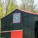 Kentucky Barn Quilt - 2 by mcstory