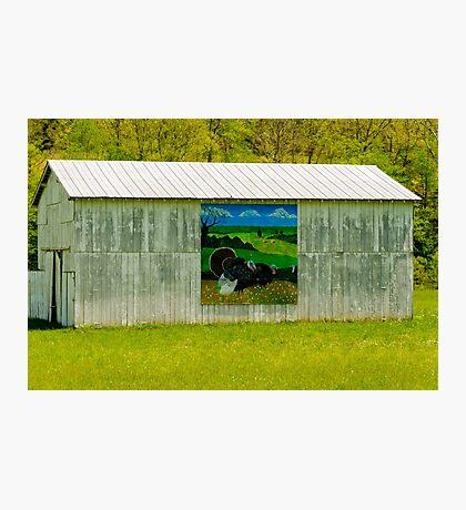 Barn - Wild Turkey Mural Photographic Print