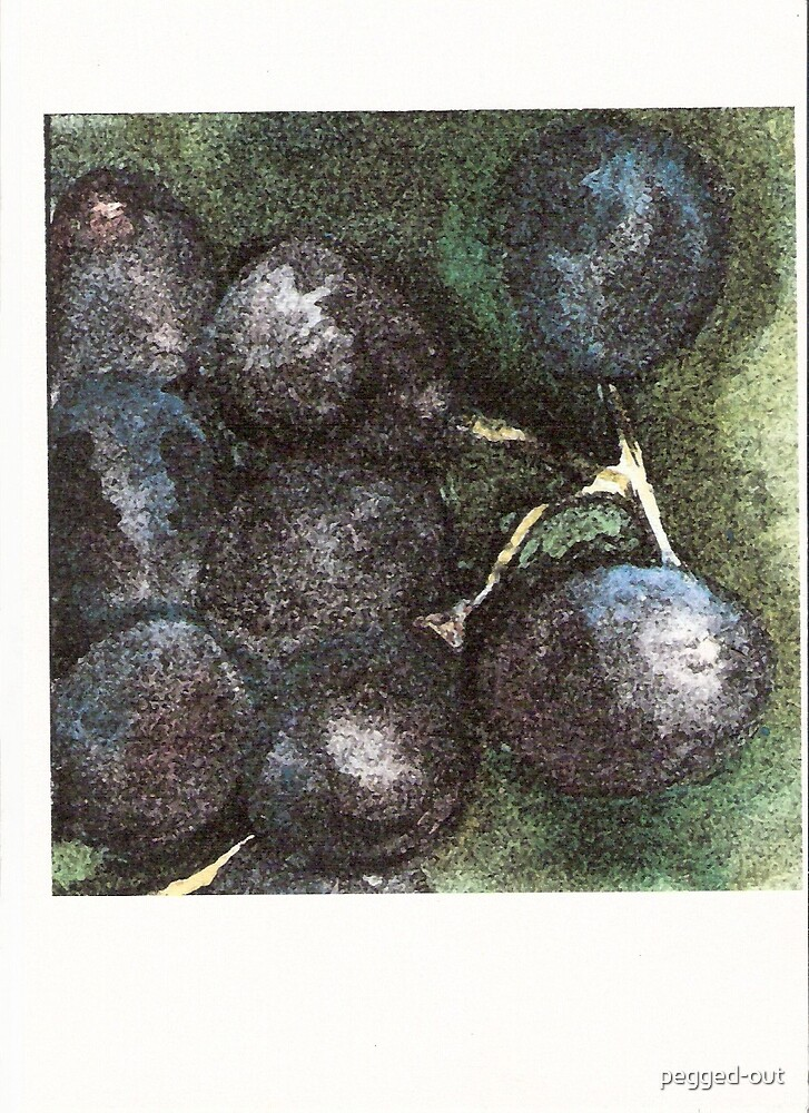 purple grapes by pegged-out