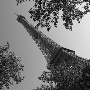 Eiffel Tower, Paris, France by neroli