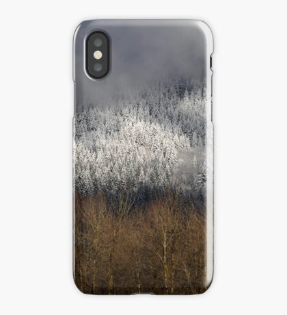 Frosted in the Valley iPhone Case