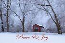 Peace & Joy by Gene Walls