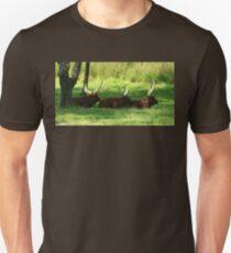 Three Ankole-Watusi Unisex T-Shirt