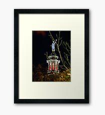 Capitol Topper Framed Print