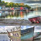 Isle of Mull by Cathy Grieve