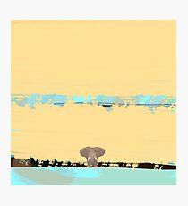 Tiny little elephant Photographic Print