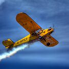 O'Briens Flying Circus Piper Cub by larry flewers