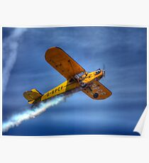 O'Briens Flying Circus Piper Cub Poster