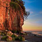 Encinitas Beach at Sunset by bengraham