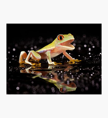 Laughing frog Photographic Print
