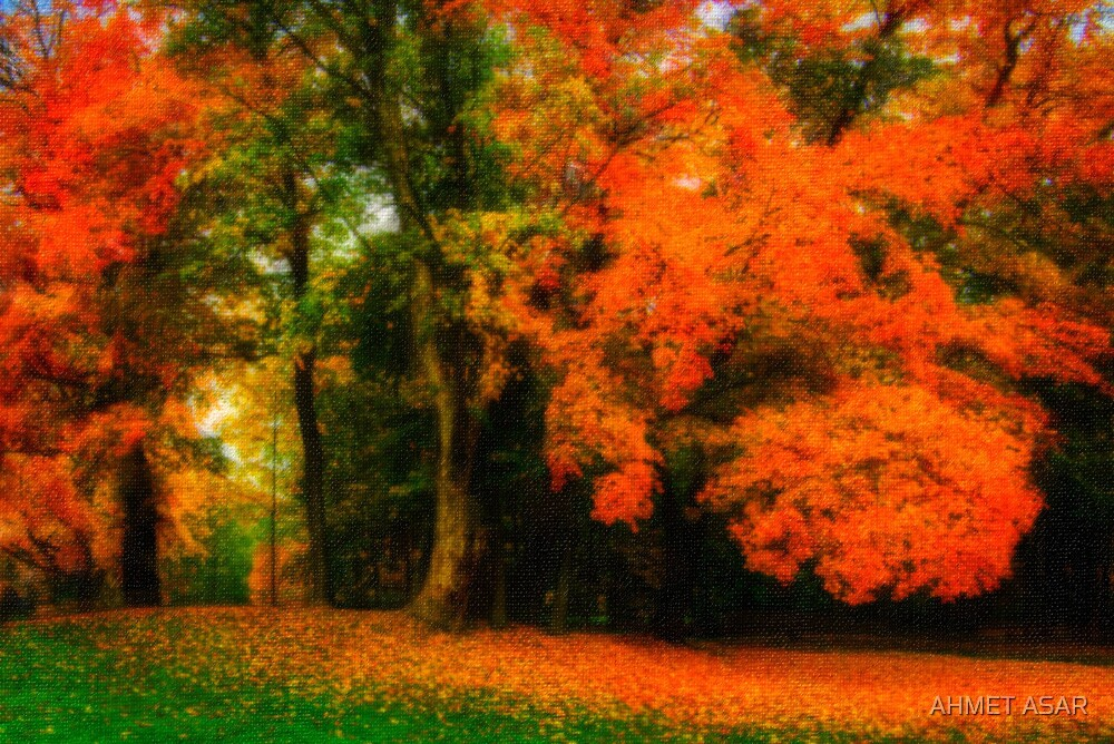 golden fall by MotionAge Media