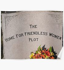 The Home for Friendless Women Plot Poster