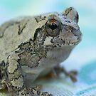 My Blue Frog iPad Case by ipadjohn