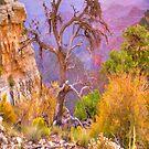 Grand Canyon Tree # 2 iPad Case by ipadjohn