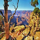 Grand Canyon View iPad Case by ipadjohn
