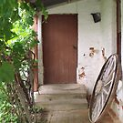 Rustic Back Entrance by Judy Woodman