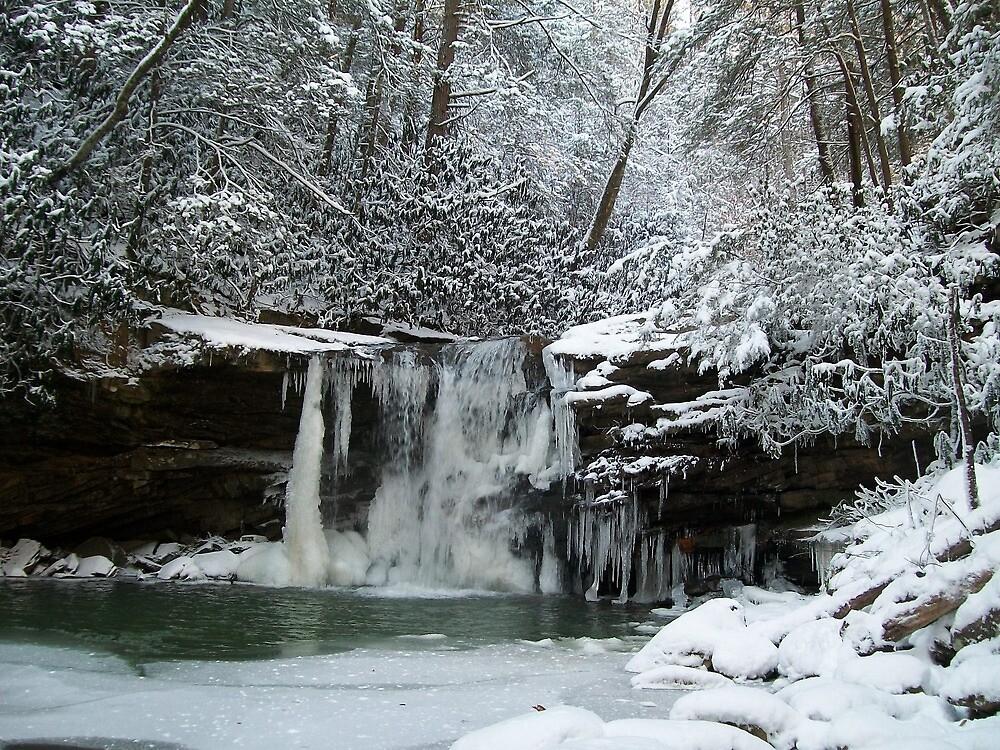 Snowy Falls by dww25921