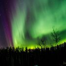 2015 Auroras 5 by peaceofthenorth