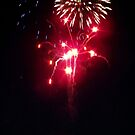 102/365 fireworks in a small town by LouJay
