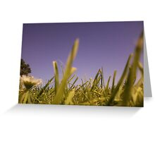 Grassy-land Greeting Card