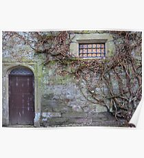 Window at Cotehele House Poster